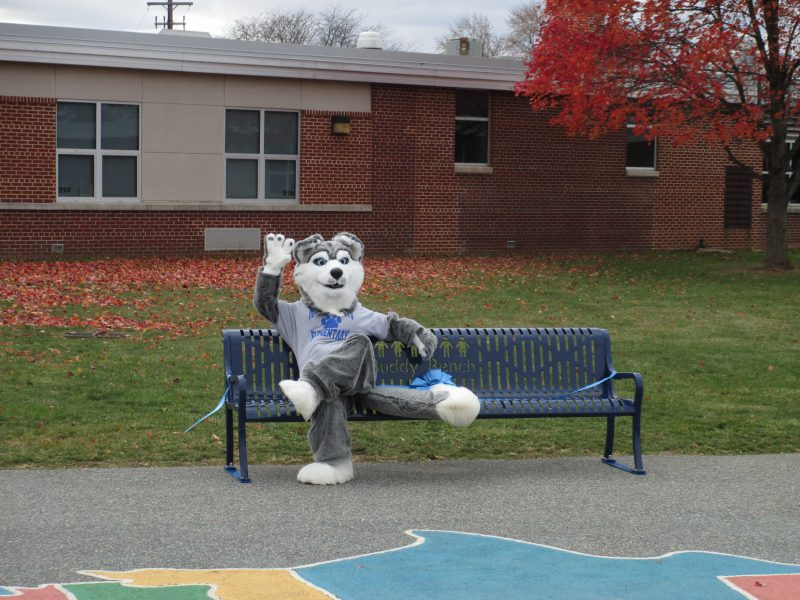 Buddy Bench 11